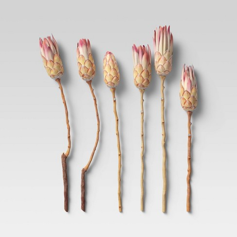6pc Dried Compactca Flower Bundle Pink - Threshold™ - image 1 of 4