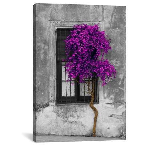 Tree in Front of Window Purple Pop Color Pop by Panoramic Images Canvas Print - image 1 of 2