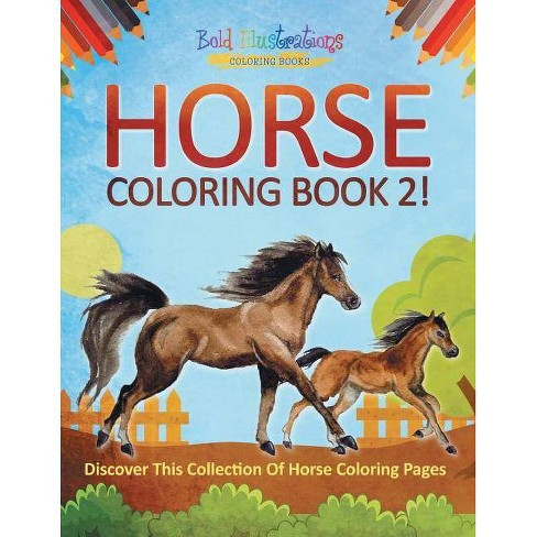 Horse Coloring Book 2! Discover This Collection Of Horse Coloring Pages - by  Bold Illustrations (Paperback) - image 1 of 1