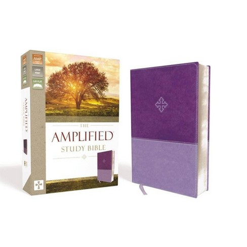 Amplified Study Bible, Imitation Leather, Purple - by Zondervan  (Leather_bound)
