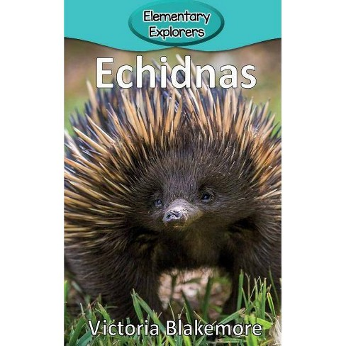 Echidnas - (Elementary Explorers) by  Victoria Blakemore (Hardcover) - image 1 of 1