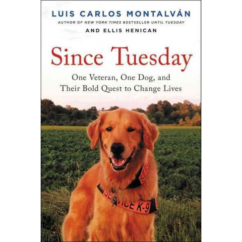 Tuesdays Promise One Veteran One Dog And Their Bold Quest To