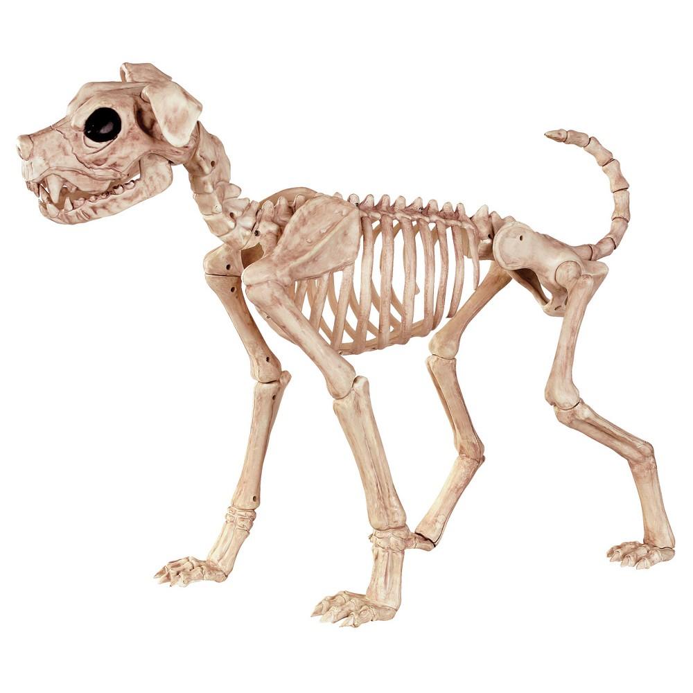 Image of Halloween Buster Bonez