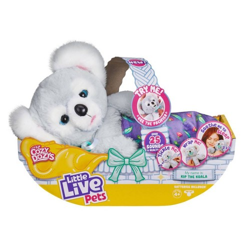 "Little Live Pets Cozy Dozys - Koala ""Kip"" - image 1 of 4"