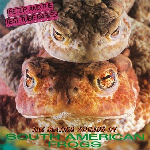 Peter & the test tub - Mating sounds of south american frogs (Vinyl) - image 1 of 1