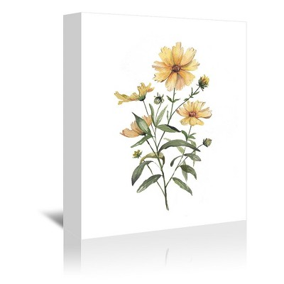 Americanflat Coreopsis by Cami Monet Wrapped Canvas