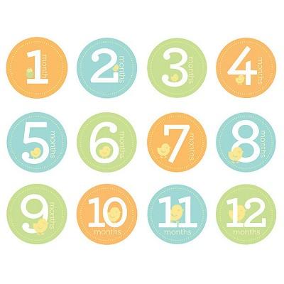 Pearhead Baby Milestone Stickers
