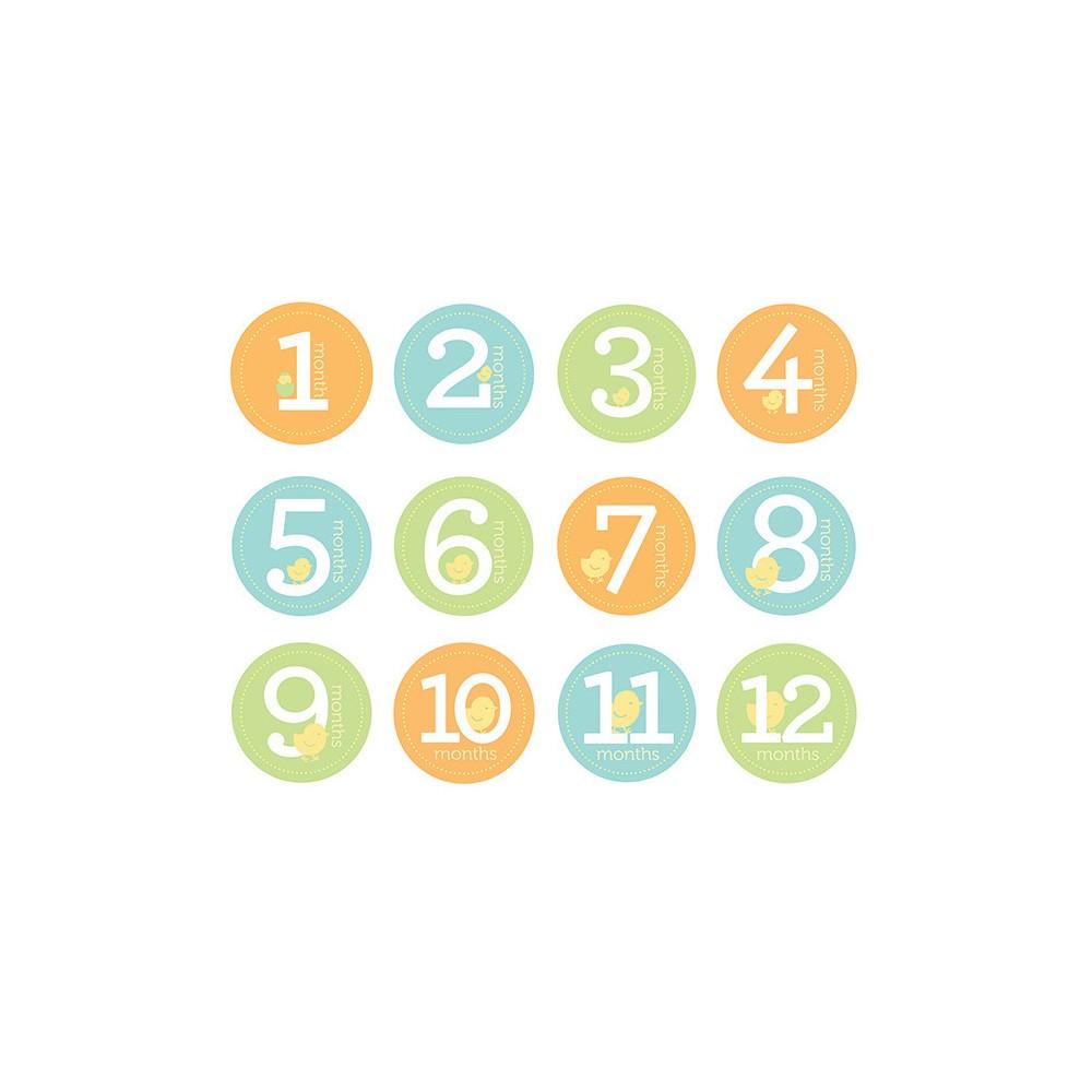Pearhead Baby Milestone Stickers, Multi-Colored