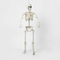 Lifesize Poseable Skeleton Halloween Decor - Hyde & EEK! Boutique™