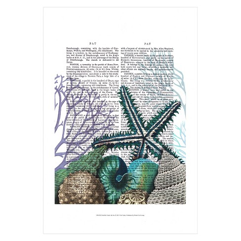 Starfish Under the Sea by Fab Funky Unframed Wall Art Print - image 1 of 2