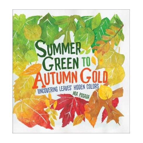 Summer Green To Autumn Gold Uncovering Leaves Hidden Colors By
