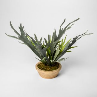 "14.5"" x 14"" Artificial Staghorn Fern In Pot Green - Threshold™"