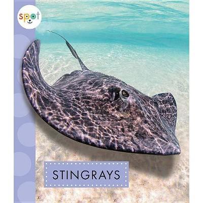 Stingrays - (Spot Ocean Animals) by  Mari C Schuh (Paperback)