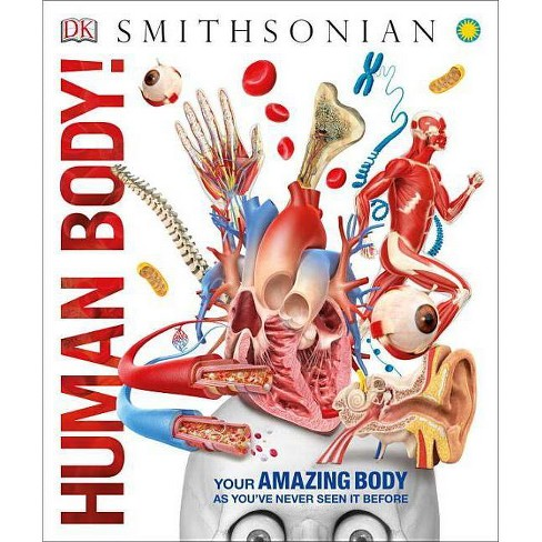 Human Body! - (Knowledge Encyclopedias) (Hardcover) - image 1 of 1