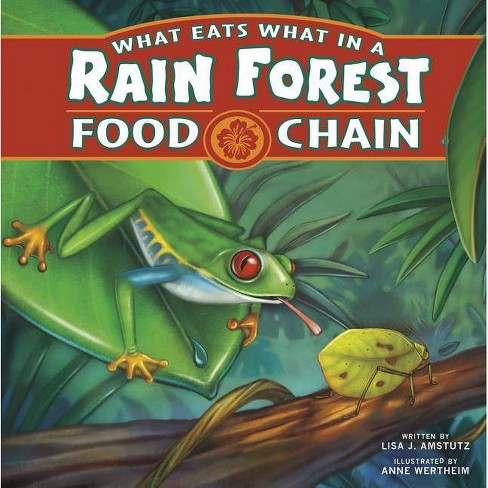 What Eats What in a Rain Forest Food Chain - (Food Chains) by  Lisa J Amstutz (Paperback) - image 1 of 1