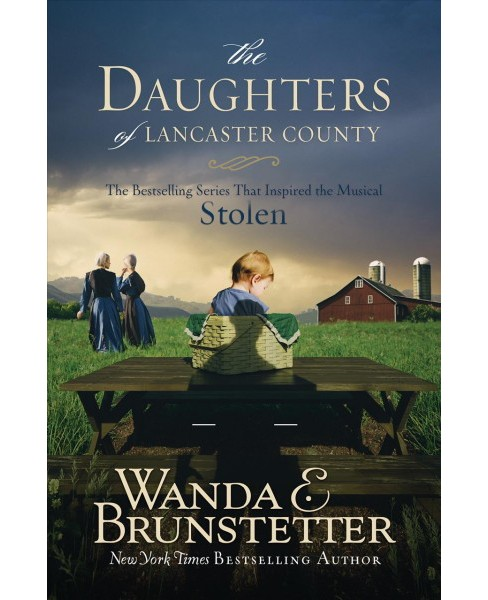 Daughters of Lancaster County : The Bestselling Series That Inspired the Musical, Stolen -  (Paperback) - image 1 of 1