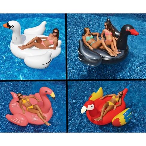 Swimline Swimming Pool Float Lounger Set, White/Black Swans + Flamingo +  Parrot