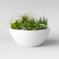 "10"" x 8"" Artificial Mixed Succulent Garden in Ceramic Bowl Green/White - Project 62™"