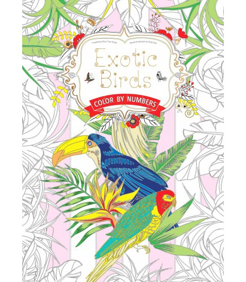 Exotic Birds : Color by Numbers (Paperback) (Daisy Seal) - image 1 of 1