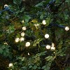 70 Lights Warm Electric LED Globe String Lights White - image 2 of 4