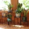 "22"" Iron Black 3-Tiered Plant Stand - Set of 2 - Black - Sunnydaze Decor - image 3 of 4"