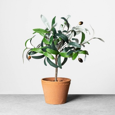 """13.5"""" Faux Olive Branch Plant - Hearth & Hand™ with Magnolia"""