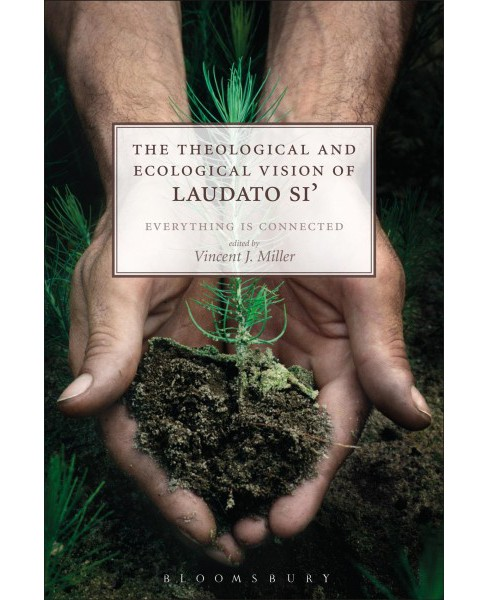 Theological and Ecological Vision of Laudato Si' : Everything Is Connected (Paperback) - image 1 of 1