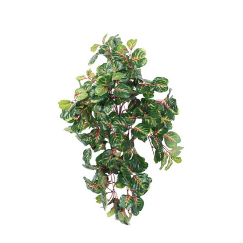 """Vickerman 27"""" Artificial Green And Red Bloodleaf Hanging Bush. - image 1 of 2"""