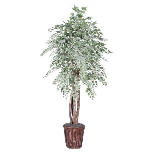 Artificial Silver Maple Executive (6ft) Green - Vickerman® - image 1 of 1