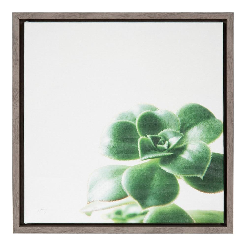 "Image of ""16""""X16"""" Succulent Simplicity Viii Neutral By Felicity Bradley Graywash - Amanti Art"""