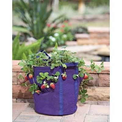 Gardener's Best® Strawberry and Herb Grow Bag - Gardener's Supply Company