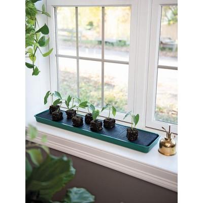 Self-Watering Windowsill Tray - Gardener's Supply Company