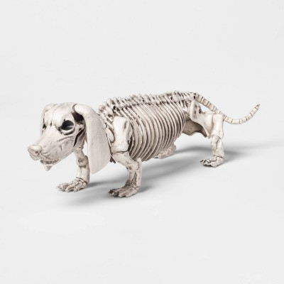 Dachshund Skeleton Decorative Halloween Prop - Hyde & EEK! Boutique™