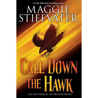 Call Down the Hawk (the Dreamer Trilogy, Book 1), 1 - by  Maggie Stiefvater (Paperback)