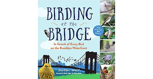 Birding at the Bridge : In Search of Every Bird on the Brooklyn Waterfront (Paperback) (Heather Wolf) - image 1 of 1