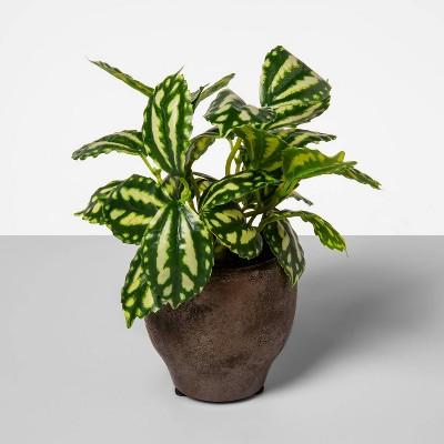 "7.7"" x 3.7"" Artificial Splatter Leaf Arrangement in Pot Green/White - Opalhouse™"