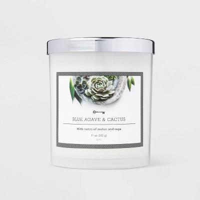 11oz Jar Blue Agave and Cactus Candle - Threshold™