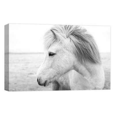 White Horse Decorative Canvas Wall Art 11 x14  - PTM Images