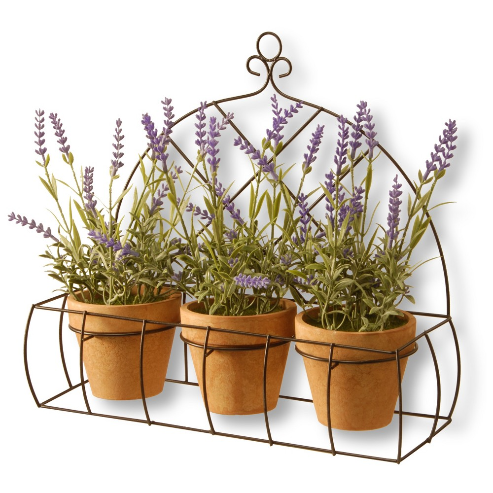 "Image of ""17"""" Potted Lavender Plants in Rack - National Tree Company, Purple Green Brown"""