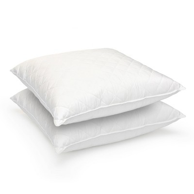 Euro 2pk Feather Bed Pillow - Stearns & Foster