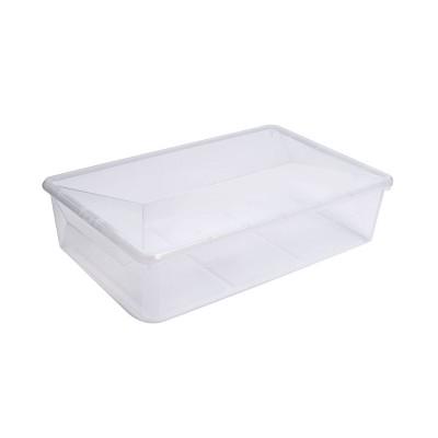 Ezy Storage 23.1L/24.4qt Karton Clear Boot Box