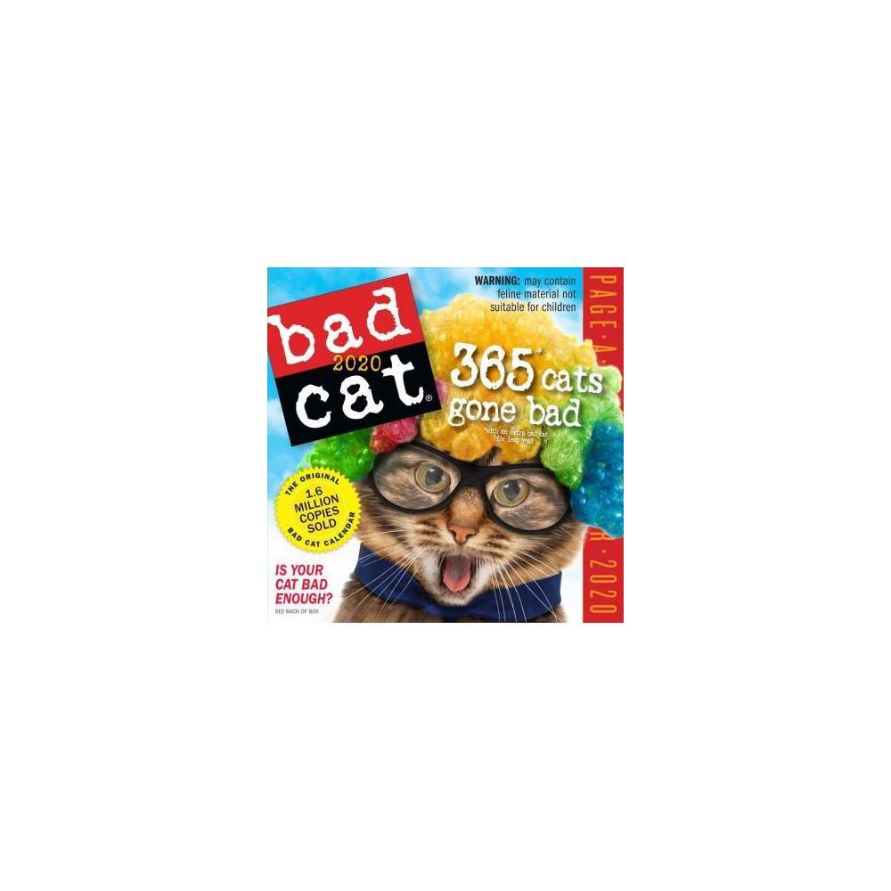 Bad Cat Color 2020 Calendar - (Paperback)