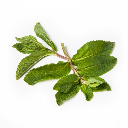 Organic Mint - 0.75oz Package - image 1 of 2