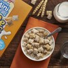 Frosted Mini Wheats Breakfast Cereal - 23oz - Kellogg's - image 3 of 4