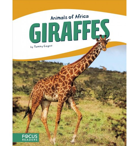 Giraffes -  (Animals of Africa) by Tammy Gagne (Hardcover) - image 1 of 1