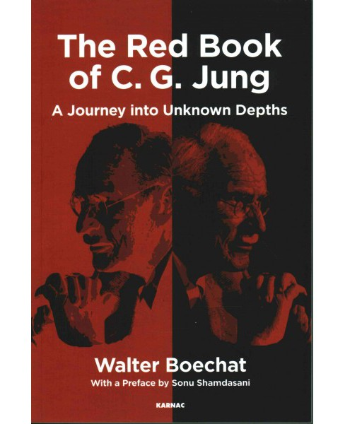 Red Book of C. G. Jung : A Journey to Unknown Depths (Paperback) (Walter Boechat) - image 1 of 1