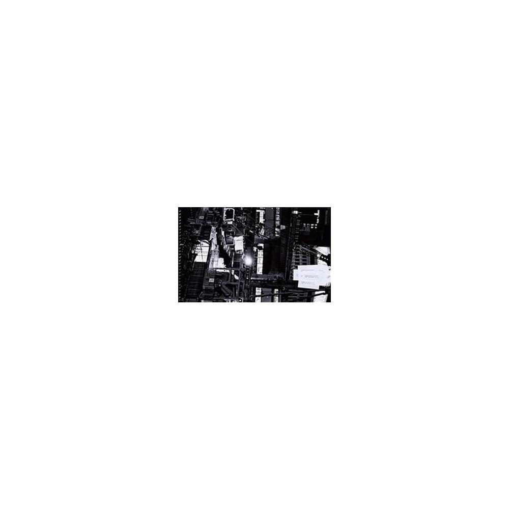 Satoshi Hirano : Reconstruction: Shibuya, 2014–2017 - (Paperback)