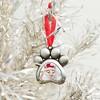 Pearhead Pet Photo Ornament - image 3 of 4