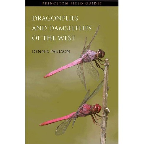 Dragonflies and Damselflies of the West - (Princeton Field Guides) by  Dennis Paulson (Paperback) - image 1 of 1