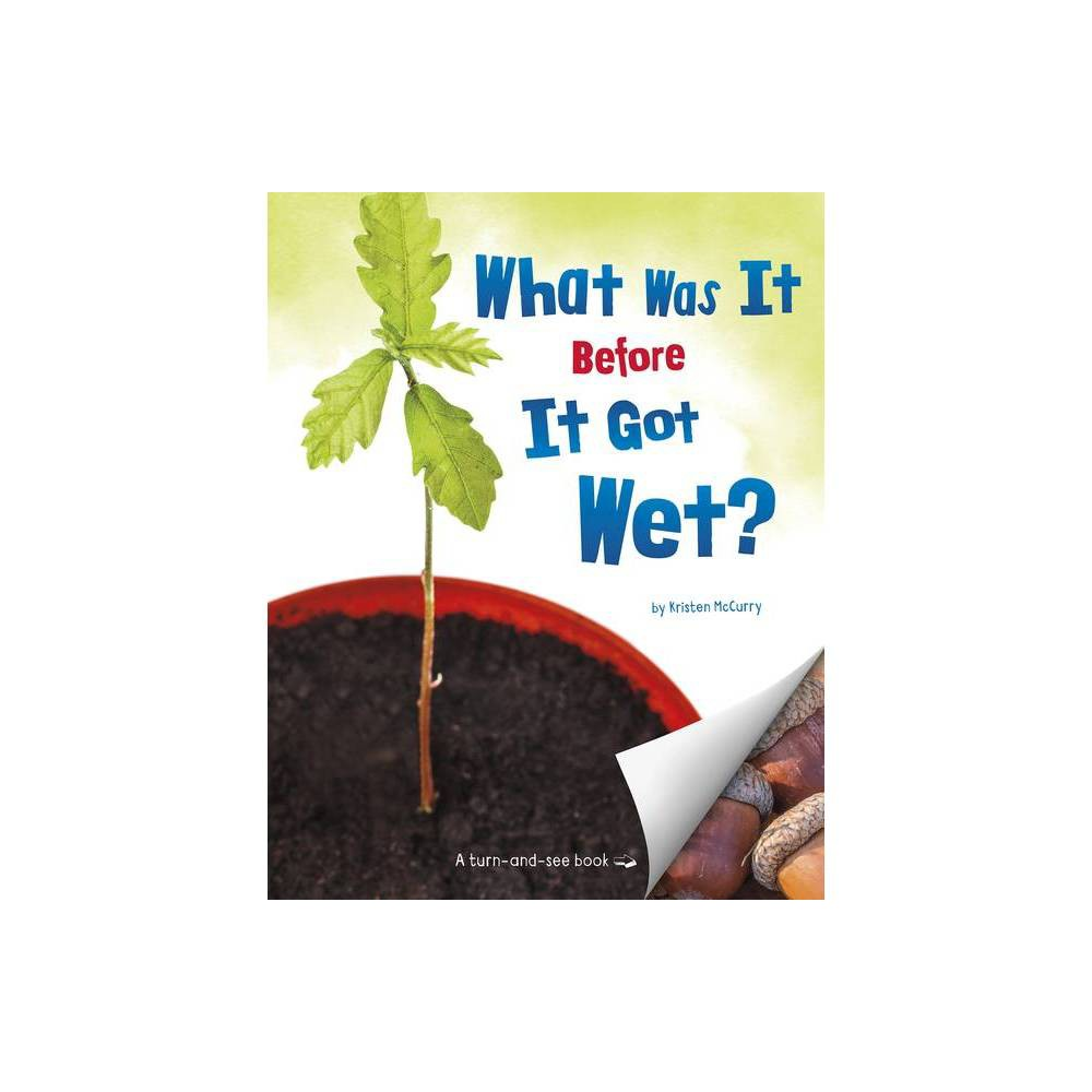 What Was It Before It Got Wet What Was It By Kristen Mccurry Hardcover